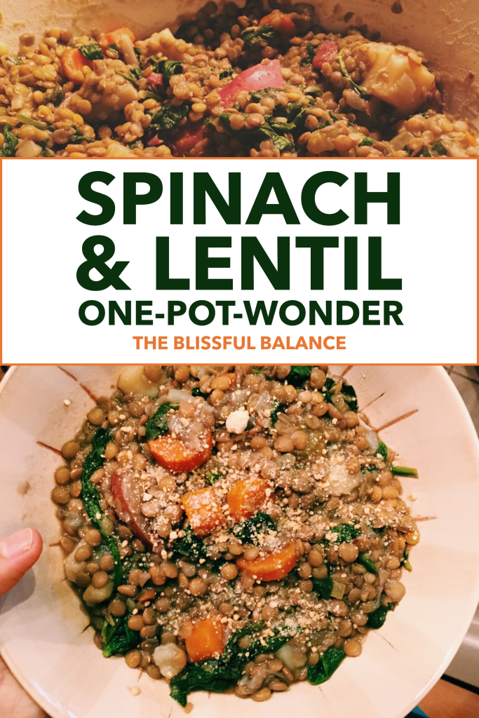 Spinach and Lentil Stew