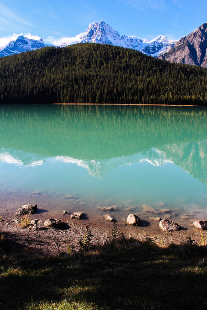North Saskatchewan River, Banff National Park