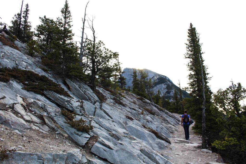 Tunnel Mountain, Banff National Park