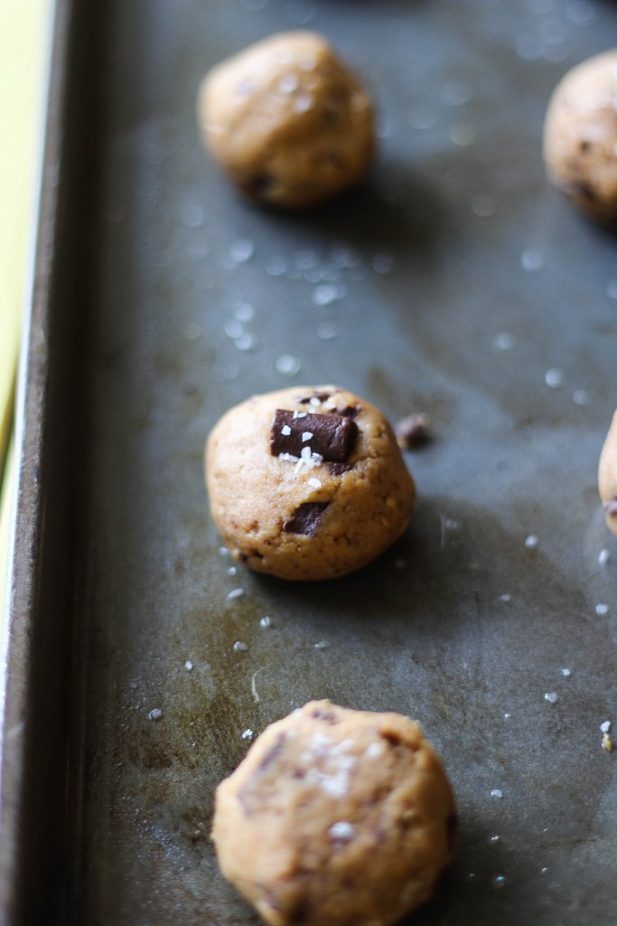 Chocolate Peanut Butter Protein Cookies
